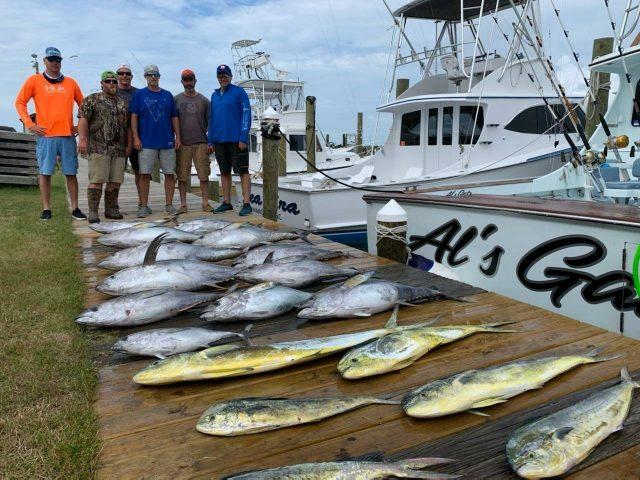 yellowfin tuna charter