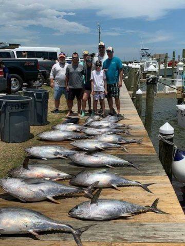 fishing for yellowfin tuna