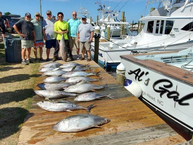 yellowfin tuna and fishing