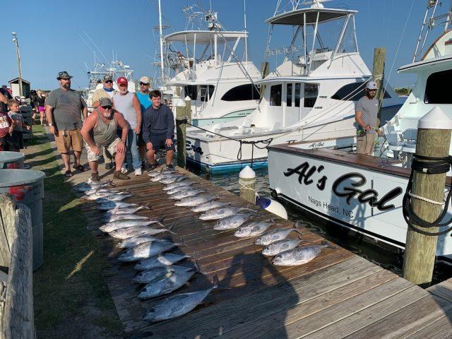 obx blackfin tuna fish