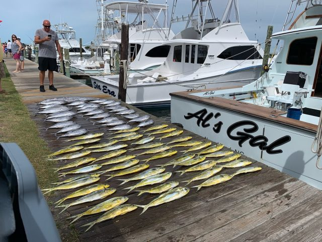 offshore fishing charter - obx